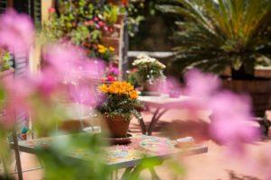 Colazione in Giardino (3)