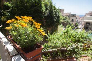 Giardino ed Esterni (3)